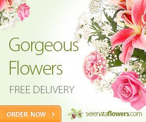 Flowers delivered uk send affordable stunning bouquets i have ordered flowers from serenta flowers on 2 occasions and the delivery was quick next day and the quality and life span of the flowers was value for m4hsunfo